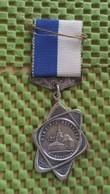 Medaille :Netherlands  -  12e W.S.V Temo - Meerkerk Poldertocht.   / Vintage Medal - Walking Association . - Nederland