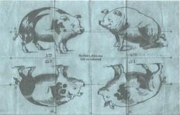 Spotprent Op Hitler. Satirisch Vouwblad, Zoek Het Vijfde Zwijn - 1939-45