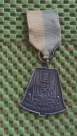 Medaille :Netherlands  -  W.S.V Natuurvrienden - Ede 1953  / Vintage Medal - Walking Association . - Nederland