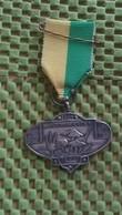 Medaille :Netherlands  -  W.V Natuurvrienden Ede  / Vintage Medal - Walking Association . - Nederland