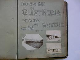 PHOTO ANCIENNE - TUNISIE : Domaine De GLIAT REDJA - Avant / Après - Août 1903 - Sept. 1919 - Afrika