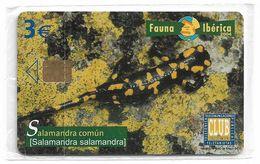 Spain - Telefonica - Fauna Iberica - Salamandra Comun - P-551 - 05.2004, 4.500ex, NSB - Espagne