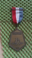 Medaille :Netherlands  -  Avondvierdaagse Lichtervoorde - 1970  / Vintage Medal - Walking Association . - Nederland