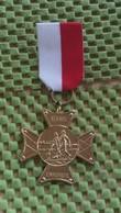Medaille :Netherlands  - E.W.B - Enschede   / Vintage Medal - Walking Association . - Nederland