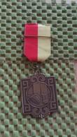 Medaille :Netherlands  -  A.W.F Watervaltocht - Loenen - 10-10-1987.   / Vintage Medal - Walking Association . - Nederland