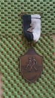 Medaille :Netherlands  -  Tukkertocht Albergen.  / Vintage Medal - Walking Association . - Nederland
