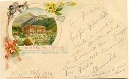 Hotel & Kurhaus Brunig - BE Berne