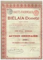 Ancienne Action - Hauts-Fourneaux De Biélaïa (Donetz) - Titre De 1899 - Titre N° 13526 - Russie