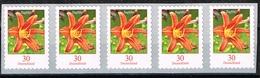 Bund 2020, Michel # 3516 ** Blumen: Taglilie Selbstklebend, 5er Streifen Mit Nr. 20 Von Der 500-er Rolle - [7] République Fédérale