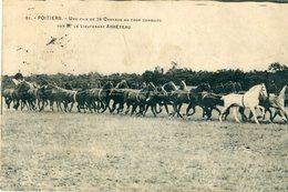 86 - Poitiers : Un File De 26 Chevaux Au Trot  ... ( Camp De Biard ? ) - Poitiers