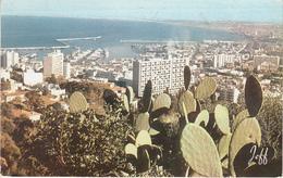 Alger Ak146804 - Ohne Zuordnung