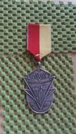 Medaille :Netherlands  -  A.W.K Voorjaartocht 1969 / Vintage Medal - Walking Association . - Nederland