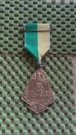 Medaille :Netherlands  - W.S.V Ommen  / Vintage Medal - Walking Association . - Nederland