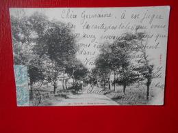 26. Île De Ré, 1903 – Route De Rivedoux (écrite) - Ile De Ré