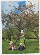14 Groupe Folklorique Blaudes Et Coiffes De Lisieux Costumes Du Pays D'Auge 1860 (2 Scans) - Lisieux