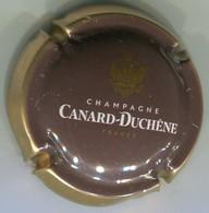 CAPSULE-CHAMPAGNE CANARD-DUCHENE N°77h Marron, Contour Or - Canard Duchêne