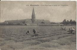 Westmalle. Den Oogst Aan D'Abdij Der Trappisten 1923 (Uitg. Hoelen Nr 434) - Malle