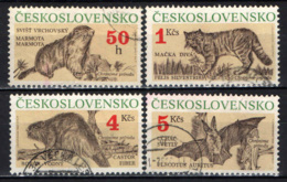 CECOSLOVACCHIA - 1990 - Protected Animals: Marmota Marmota, Felis Silvestris, Castor Fiber, Plecotus Auritus - USATI - Gebraucht
