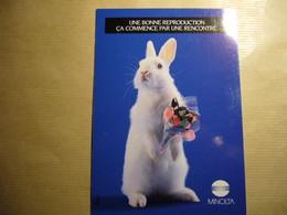 1 Carte Postale HUMOUR A LA CARTE ('annee 80_90) - Publicité
