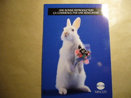 1 Carte Postale HUMOUR A LA CARTE ('annee 80_90) - Pubblicitari