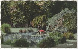Marne ;  REIMS  :  Vue  Jardin  école  Année 60 - Reims