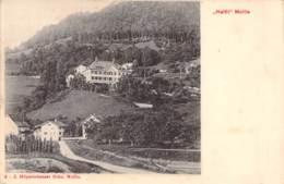 """Haltli """"Mollis"""" 1907 - GL Glarus"""