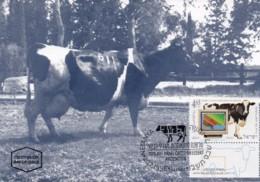 ISRAEL, 1996, Maxi-Card(s), Cattle Breeding, SG1311, F5502 - Tarjetas – Máxima