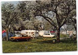 Bertangles -  Camping Du Château Edit Cim  Automobile Citroen DS Caravanes - Francia