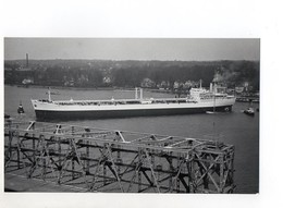 C1361/ Handelsschiff Tanker Almizan Auf Der Elbe  Foto Ca.1965 23 X 14 Cm - Commercio
