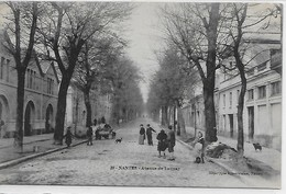 Nantes-Avenue De Launay - Nantes