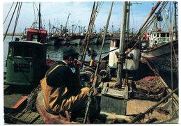 Maroc - Agadir - Port - Boats - Harbour - Ship - Fishing - Agadir