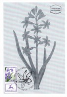 ISRAEL, 1999, Maxi-Card(s), Hyacinth, SG1427 , F5562 - Tarjetas – Máxima