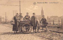 KNOKKE - Voiture à Chien - Laitière Flamande - Ed. Weber. - Knokke