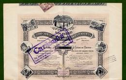 T-ES Sociedad De Ferro-Carriles De Montana A Grandes Pendientes Barcelona 1891 - Chemin De Fer & Tramway