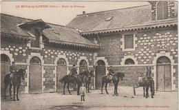 Orne : LE  MESLE  Sur  Sarthe :  école D E Dressage , Haras , Cheval, 1915 - Le Mêle-sur-Sarthe