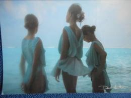 CP DAVID HAMILTON - 3 Jeunes Filles En Tenue Légère Au Bord De L'eau - Illustrateurs & Photographes