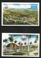 MICRONESIE 1991 GOUVERNEMENT  YVERT N°B7/8  NEUF MNH** - Micronésie