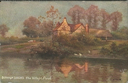 Tuck Burnham Beeches The Village Pond - Tuck, Raphael