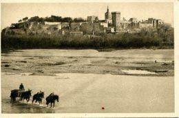 CPA - AVIGNON - LES BORDS DU RHONE - Avignon