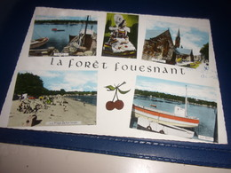 CPM CPSM FINISTERE  FORET DE FOUESNANT - Fouesnant
