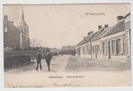 Wilmarsdonck  Wilmarsdonk   Antwerpen  Molenstraat Rue Du Moulin  Edit F Hoelen N° 753 - Antwerpen
