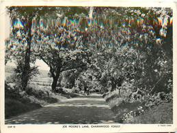 JOE MOORE'S LANE CHARNWOOD FOREST TUCK - England