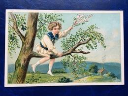 """Cpa--gaufrée-""""Garçon Sur Branche D'arbre-costume Marin""""--(my Ref 332)-1908 - Scènes & Paysages"""