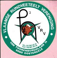 Sticker - Vlaamse Rundveeteelt Vereniging - Van Thorenburghlaan Oosterzele - Stickers
