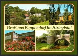 D1899 - TOP Pappendorf Schule  - Verlag Bild Und Heimat Reichenbach Qualitätskarte - Duitsland