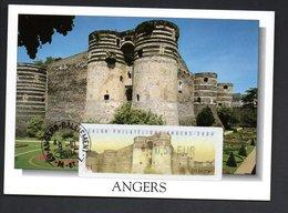 CARTE MAXIMUM -- ANGERS  2004 LISA 0,50  SALON  PHILATELIQUE - Maximum Cards