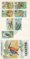 Lesotho,  Birds Definitives, 1981,  First Day Cover , MASERU 20th APRIL 1981 - Lesotho (1966-...)