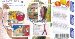 Nederland - 2008 - Blok Grenzeloos Nederland - NVPH 2579 - Gebruikt - 1980-... (Beatrix)