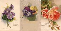 C Klein - X 3 Violettes Pensées Roses - Klein, Catharina