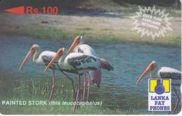 TARJETA DE SRY LANKA DE Rs.100 DE UN PAINTED STORK (29SRLC) BIRD-PAJARO - Sri Lanka (Ceilán)